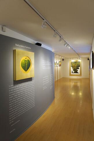 ManiFiesta, installation view