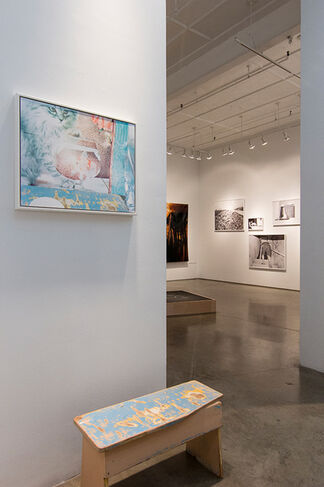 Certain Things   Rhode Island School of Design 2016 MFA Photography Show, installation view