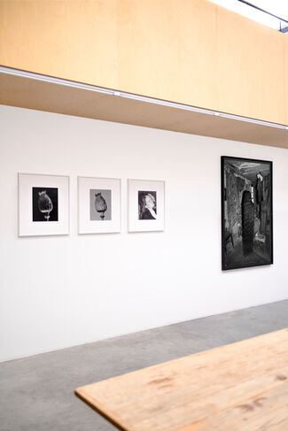 Tereza Zelenkova - 'The Essential Solitude', installation view