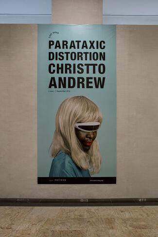 CHRISTTO & ANDREW - PARATAXIC DISTORTION, installation view
