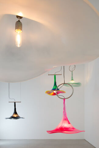 Morning Glory: Paula Hayes, installation view
