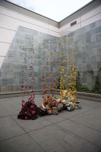 PIECES OF WHAT by Carolina Sánchez de Bustamante and Maxwell Sterry - Kelowna Art Gallery, installation view