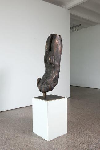 Brandt Junceau, installation view
