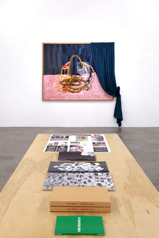 New Gestures: Fabricated to be Photographed, installation view