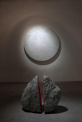 Tree of Life - Shinji Ohmaki, installation view