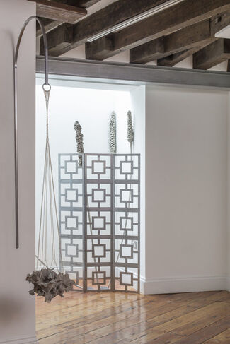 A  Crazed Flowering, installation view
