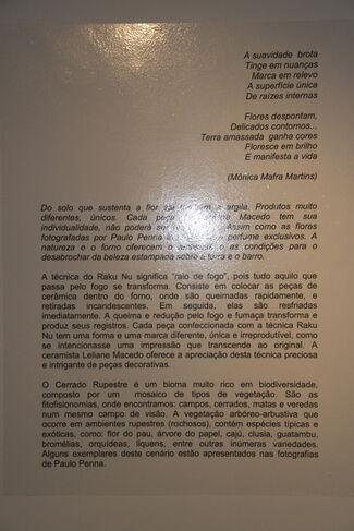 O RAKU NU APRESENTA O CERRADO RUPESTRE, installation view