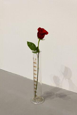 Glenda Cinquegrana Art Consulting at Flashback, installation view