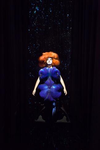 Björk, installation view