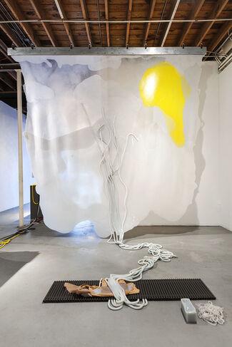 Martha Friedman: Pore, installation view