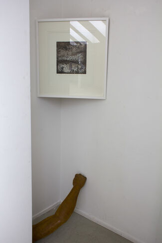 "CREATURE COMFORTS by Greta Grendaitė, Tomas Vosylius (""Legal ART Lovers""), installation view"