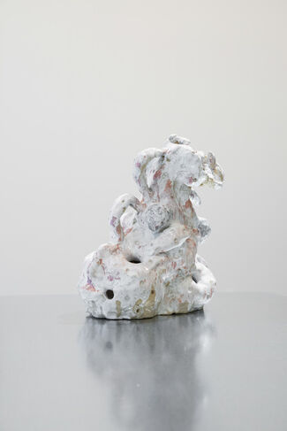 Penis Mushroom Series by Adomas Danusevicius, installation view