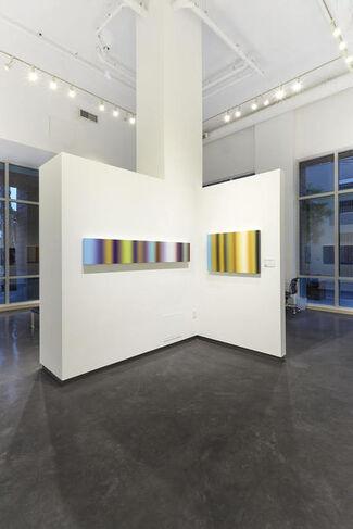 Patrick Dintino: Resilience, installation view