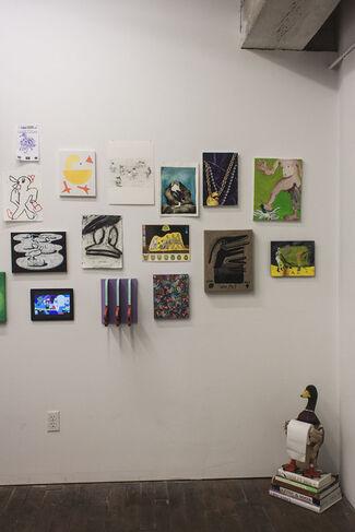Ducks, installation view