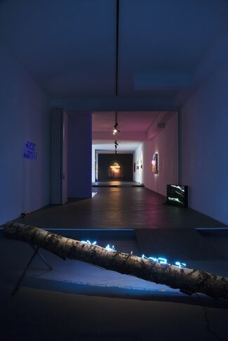 OLIVIA STEELE – Faux Real, installation view