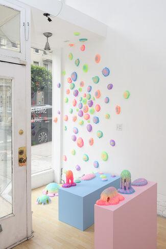 Dan Lam: Sweetmeats, installation view