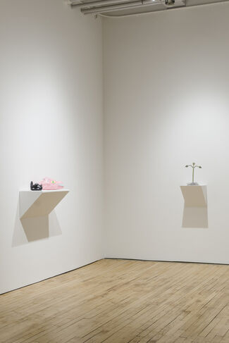 Person, Place or Thing, installation view