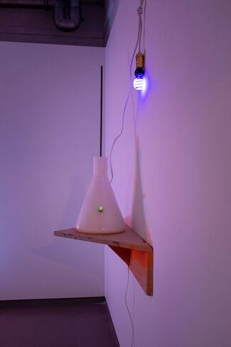 Elias Hansen, installation view