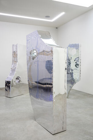 The Perception of Narcissus, installation view