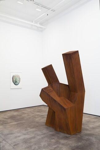 Nathan Mabry: Shapeshifter, installation view