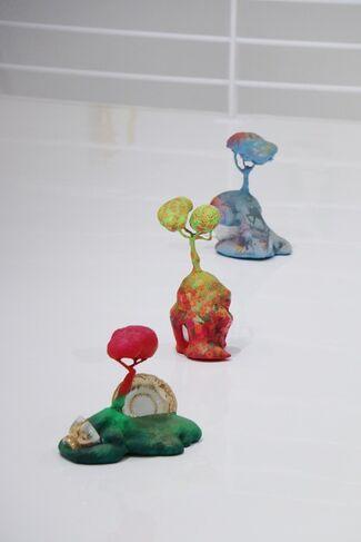Bruno Miguel: Seduction and Reason, installation view