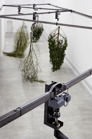 """Michael Sailstorfer: """"Every piece is a new problem"""" at Contemporary Arts Center, Cincinnati, installation view"""