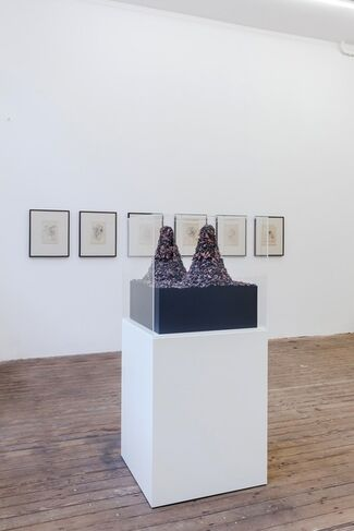 Homage to Freud Eggs and Bacon, installation view