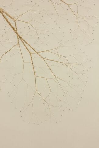 Janaina Mello Landini, installation view