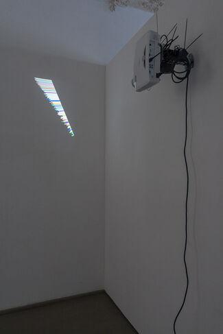 Ignas Kruglevičius, installation view