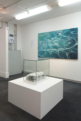 Pulp   Marita Hewitt, installation view