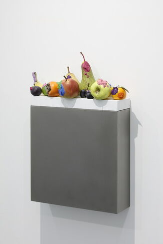 """Yosuke Amemiya """"One Fruit Sculpture and Breathlessness, and the Rest All in the Backyard"""", installation view"""