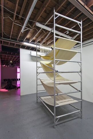 Frances Trombly: Over and Under in the Project Room, installation view