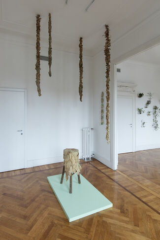 Domande sul vivente / Questions on the living, installation view