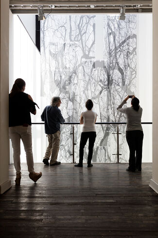 In Situ, installation view