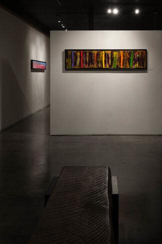 Wild Jungle Songs - Scott Plear, installation view