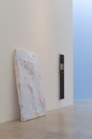 Oyster, installation view