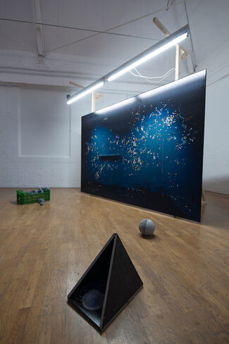 Anne Hardy: FIELD, installation view