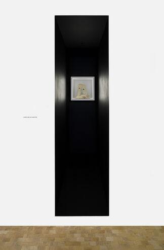 Caroline Achaintre: The Box, installation view