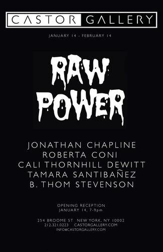 Raw Power, installation view
