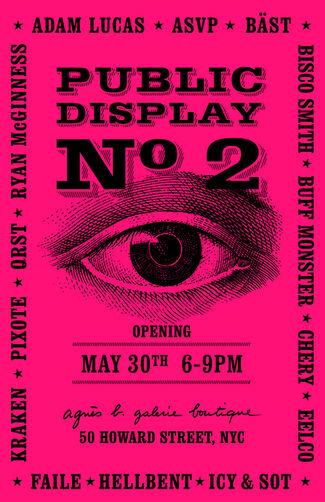 Public Display No 2, installation view