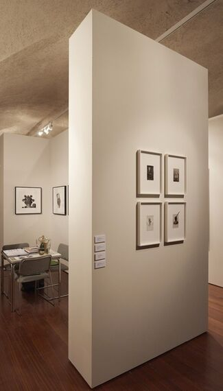 Tiwani Contemporary at Photo London 2015, installation view