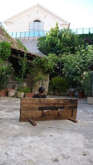 Regina Josè Galindo - Cepo, installation view