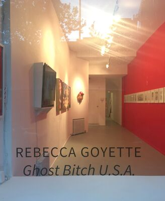 """Rebecca Goyette - """"Ghost Bitch U.S.A."""", installation view"""