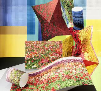 Anastasia Samoylova, 'Flower Fields', 2013