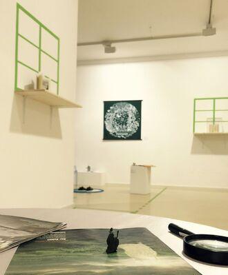Metamorphosis, installation view