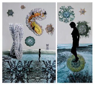 Sonia Mehra Chawla, ' TRANSITORY SHORES & BIOMORPHIC DAYDREAMS II', 2013