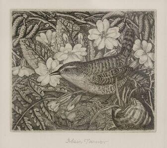 Robin Tanner, 'Wren and Primrose', 1936