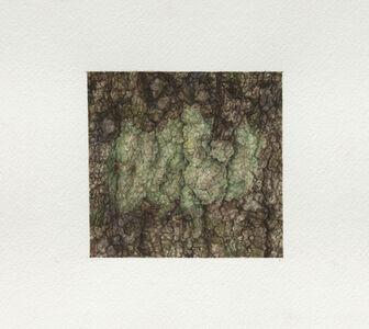 Ellen Altfest, 'Green Shapes', 2021
