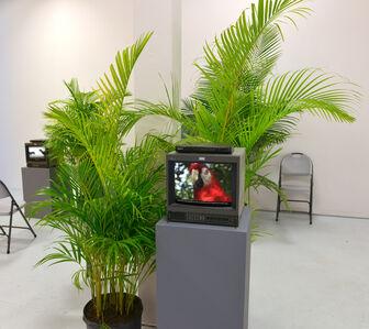 Sergio Vega, 'Genesis According to Parrots', 2004