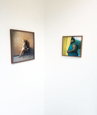 The Bird in Borrowed Feathers, installation view